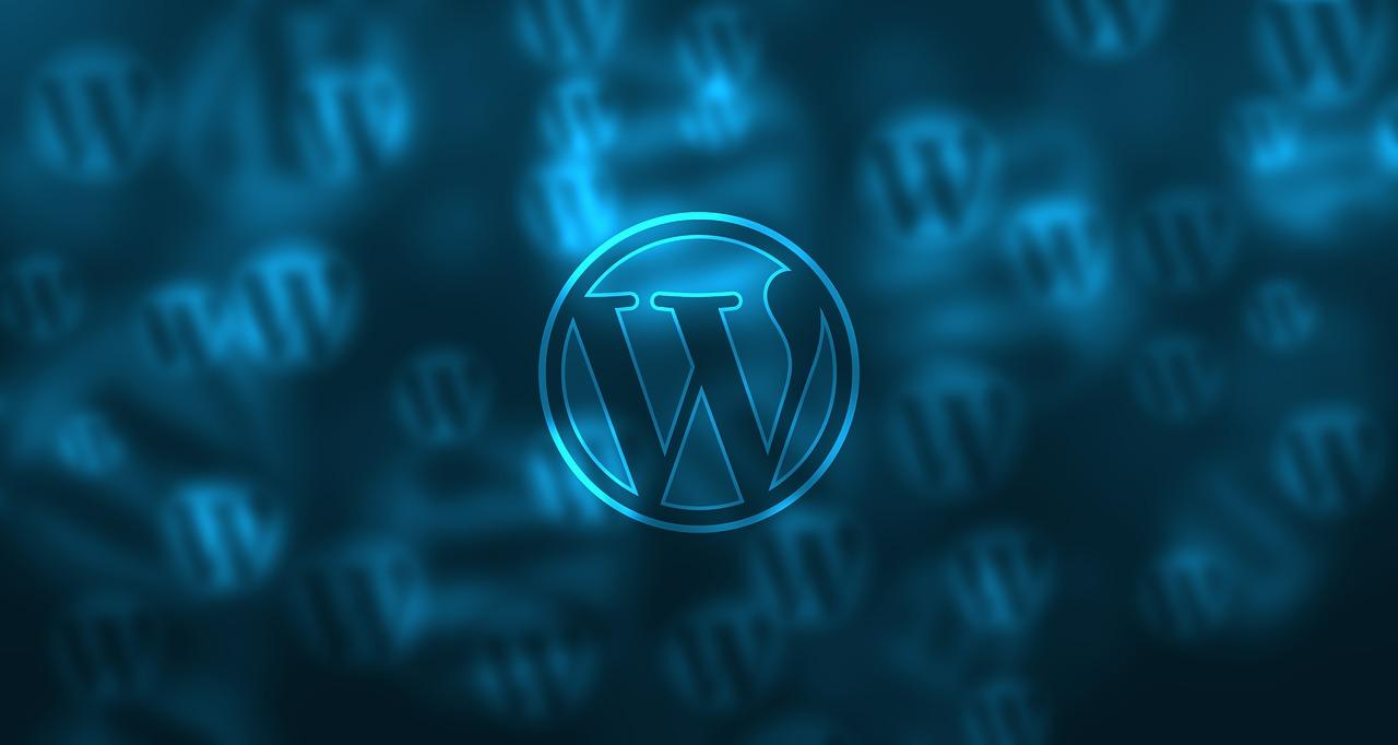 Pozycjonownie WordPress (2)